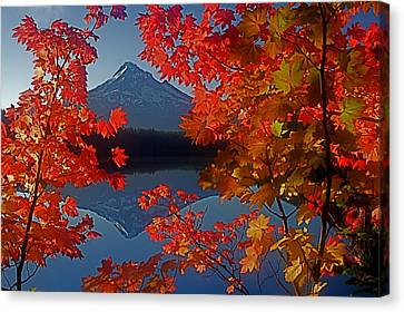 Lost Lake Autumn Canvas Print by Todd Kreuter