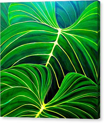 Canvas Print featuring the painting Lovely Greens by Debbie Chamberlin