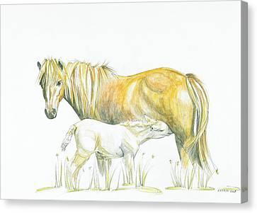 Loving Care Canvas Print by Katrin J Oskarsdottir