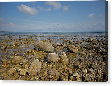 Canvas Print featuring the photograph Low Tide by Nicola Fiscarelli
