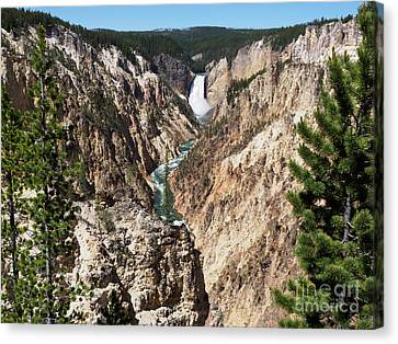 Lower Falls From Artist Point In Yellowstone National Park Canvas Print by Louise Heusinkveld