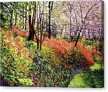 Magic Flower Forest Canvas Print by David Lloyd Glover