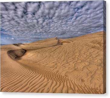 Magic Of The Dunes Canvas Print