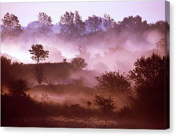 Magical Misty Morning Canvas Print by Roeselien Raimond