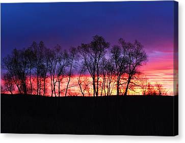 Magical Sunrise Canvas Print by Dacia Doroff