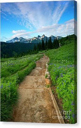 Majestic Trail Canvas Print by Mike Dawson