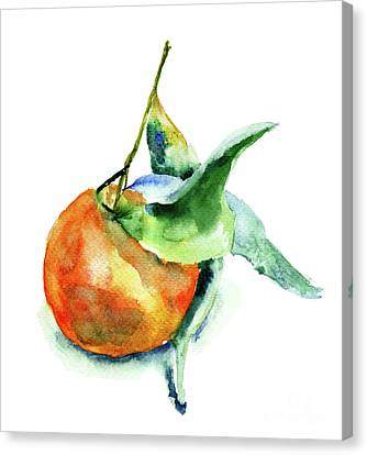 Mandarin Fruits Canvas Print