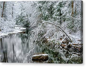 Canvas Print featuring the photograph March Snow Cranberry River by Thomas R Fletcher