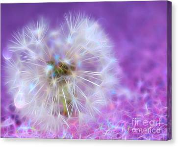May Your Wish Come True Canvas Print by Krissy Katsimbras
