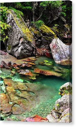 Mcdonald Creek 11 Canvas Print
