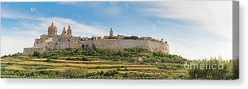 Sleeping Maltese Canvas Print - Mdina L-imdina Skyline by The Lift Creative Services