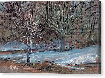 Melting Snow Canvas Print by Donald Maier