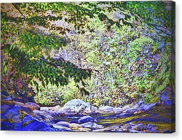 Mesmerized Canvas Print by Deborah