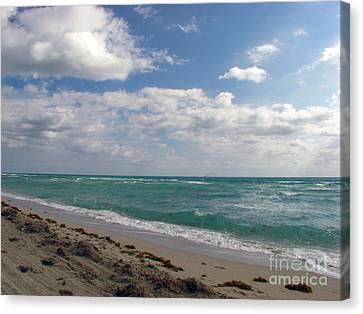 Florid Canvas Print - Miami Beach by Amanda Barcon