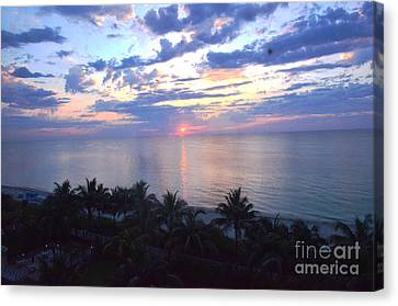 Miami Sunrise Canvas Print by Pravine Chester