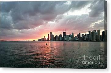 Miami Sunset Canvas Print by Daniel Diaz