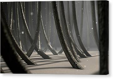 Microscopic Hair Fibers Canvas Print by Allan Swart