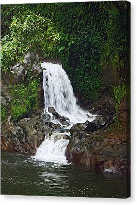 Mini Waterfall Canvas Print