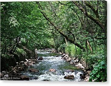Minnehaha Creek Canvas Print