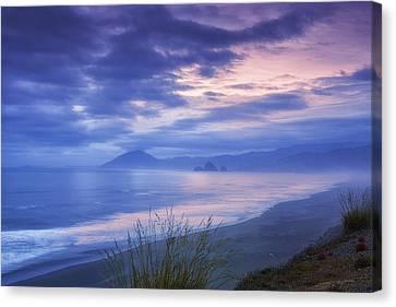 Misty Coastline Canvas Print by Andrew Soundarajan