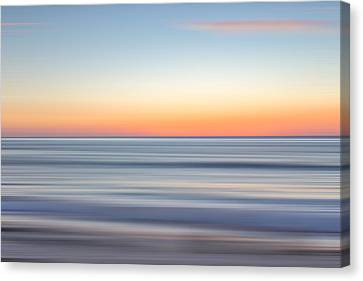 La Jolla Art Canvas Print - M'ocean 15 by Peter Tellone