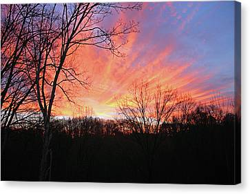 Canvas Print featuring the photograph Morning Has Broken by Kristin Elmquist