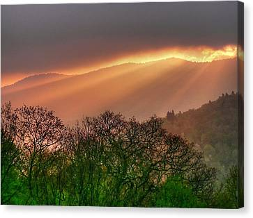 Canvas Print featuring the photograph Morning Light by Doug McPherson