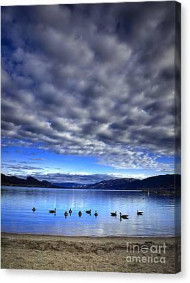 Morning Light On Okanagan Lake Canvas Print by Tara Turner
