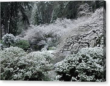 Morning Snow In The Garden Canvas Print