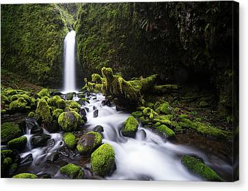Canvas Print featuring the photograph Mossy Grotto by Brian Bonham