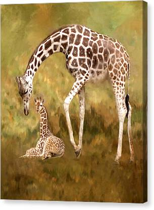 Mother And Child Canvas Print by Jack Zulli