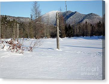 Mount Carrigain - White Mountains New Hampshire Usa Canvas Print by Erin Paul Donovan