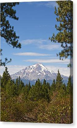 Canvas Print featuring the photograph Mount Shasta by Daniel Hebard