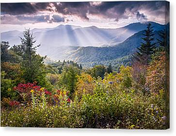 Mountain Majesty Canvas Print
