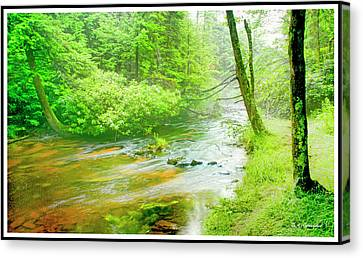 Mountain Stream, Pocono Mountains, Pennsylvania Canvas Print
