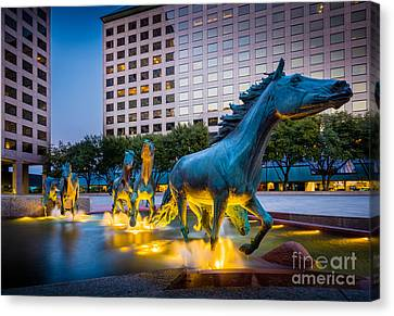 Mustangs At Las Colinas Canvas Print by Inge Johnsson