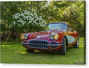 My 1960 Corvette Canvas Print