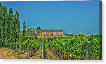 Napa Valley Vineyard And Winery Canvas Print by Mountain Dreams