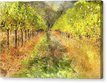 Napa Valley Vineyard In Autumn Canvas Print by Brandon Bourdages