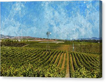Wine Canvas Print - Napa Valley Vineyard In California by Brandon Bourdages