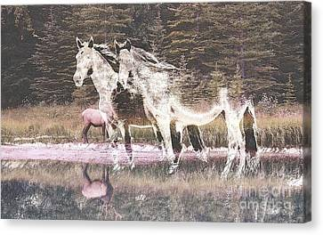 Nature Collage Canvas Print