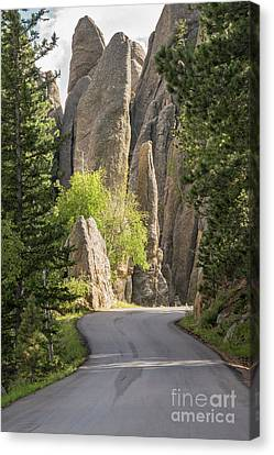 Needles Highway Canvas Print by Juli Scalzi