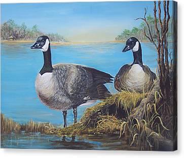 Nesting At Millsboro Pond Canvas Print