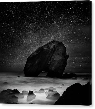 Canvas Print featuring the photograph Night Guardian by Jorge Maia