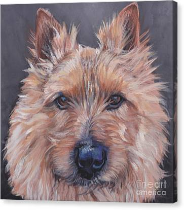 Canvas Print featuring the painting Norwich Terrier by Lee Ann Shepard