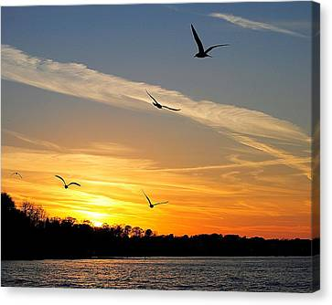 November Sunset Canvas Print by Frozen in Time Fine Art Photography