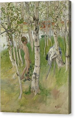 Nude Boy Among Birches Canvas Print by Carl Larsson