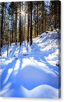 Oak Creek Canyon Canvas Print by Alexey Stiop