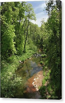 Verde River Canvas Print - Oak Creek by Ellen Henneke