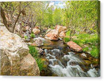Oak Creek Canvas Print by Jon Manjeot